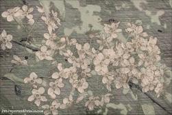 wildflower pastel