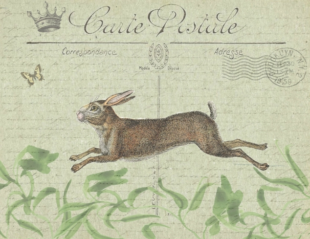 Carte Postale Rabbit 8.5 x 11