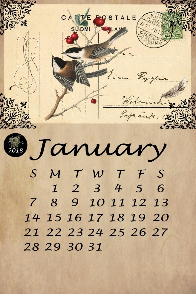 Bird Calendar January 2018