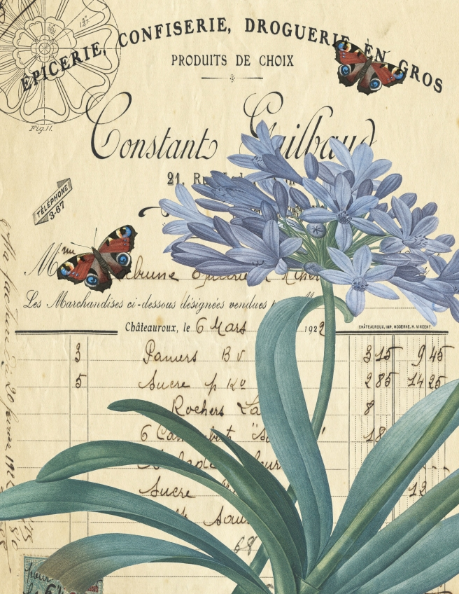 Blue Flower and butterfly botanical paper 8.5 x 11