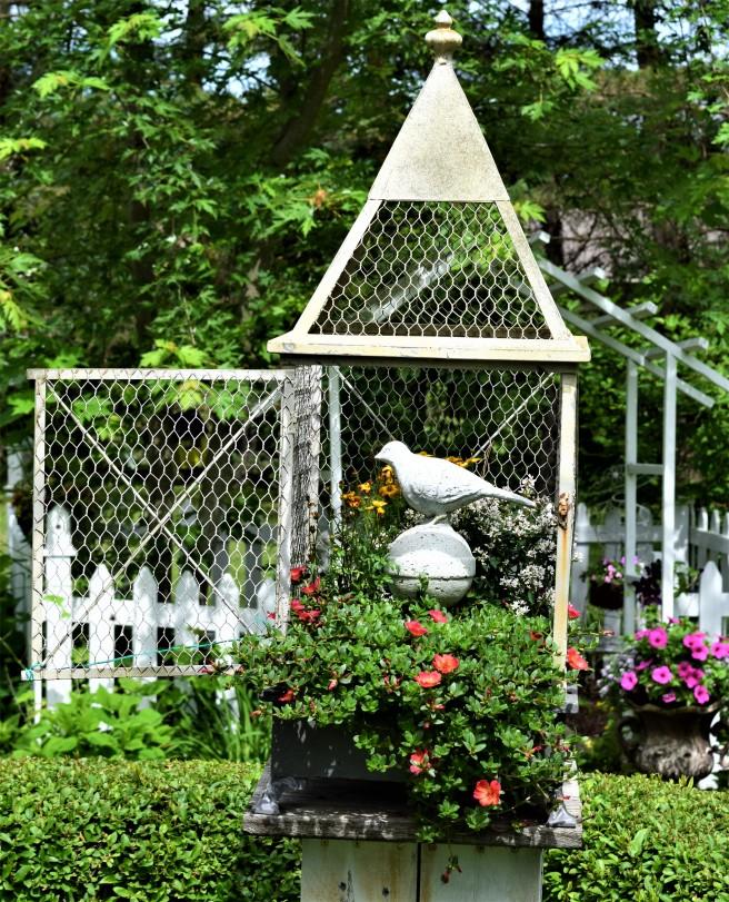 Bird cage blog