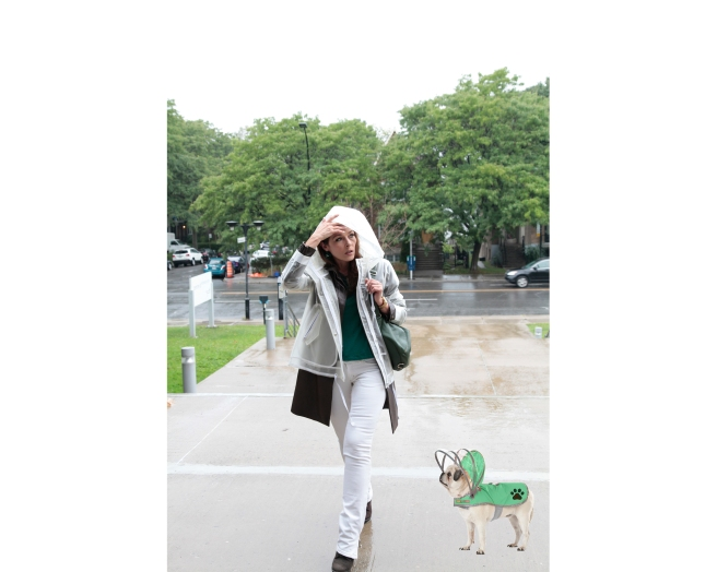 Do and raincoat dog