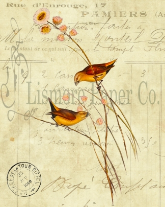 Gold Finch Invoice Paper Watermark