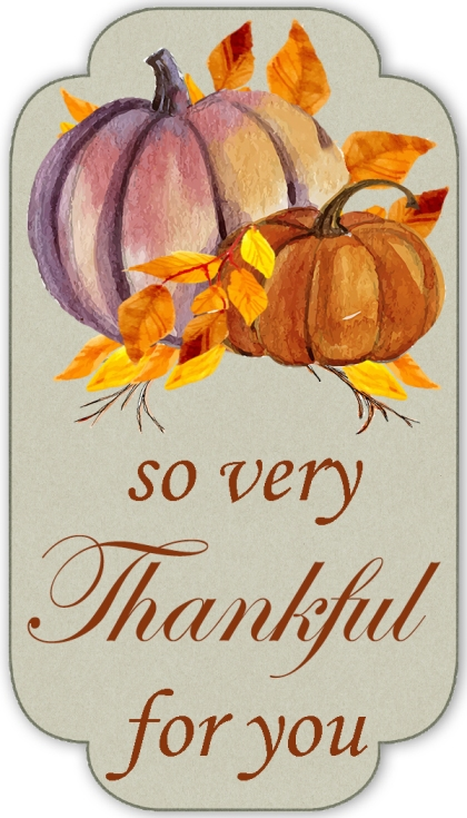 Tag - So very Thankful for you 2inch x 3.5inch tag